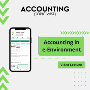 Accounting in e-Environment