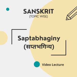 Saptabhaginy (सप्तभगिन्य)