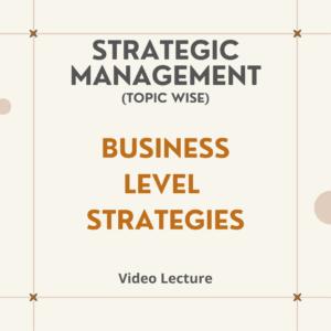 Business Level Strategies