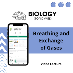 Breathing and Exchange of Gases