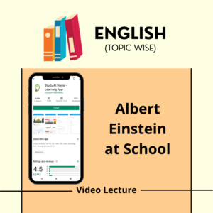 Albert Einstein at School